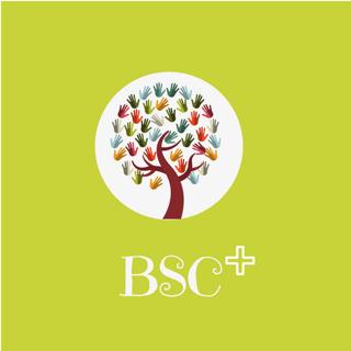 BSC+LOGO.png