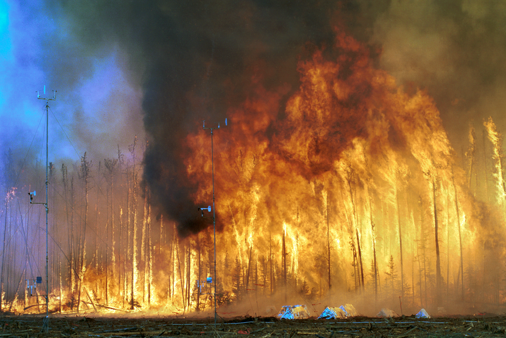 Northwest_Crown_Fire_Experiment.png