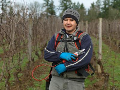 Omar Perea  - Winery & Vineyard