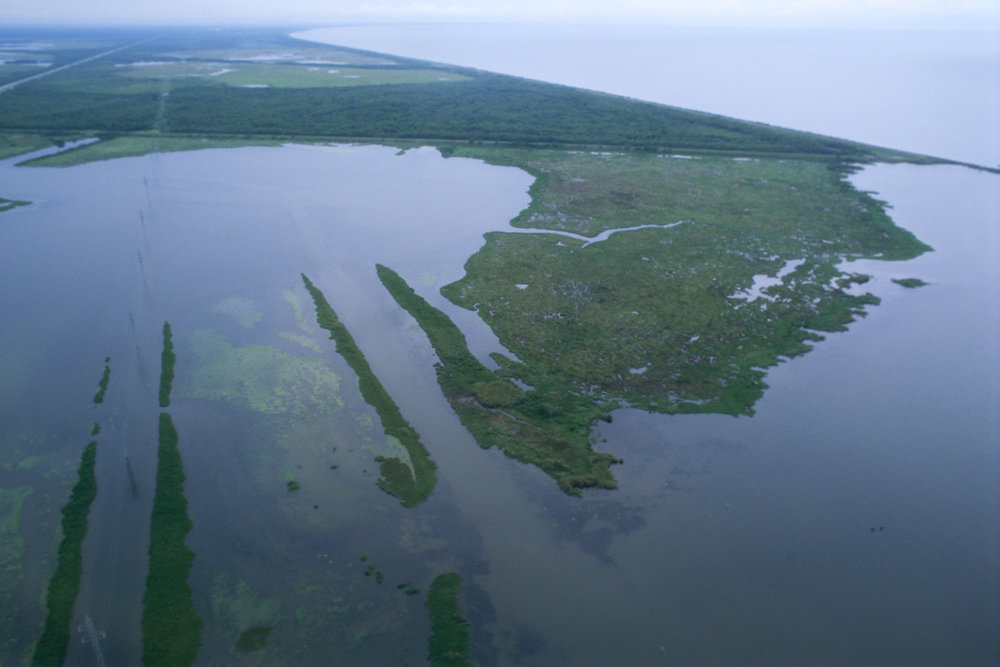Louisiana_wetlands_aerial_view.jpg