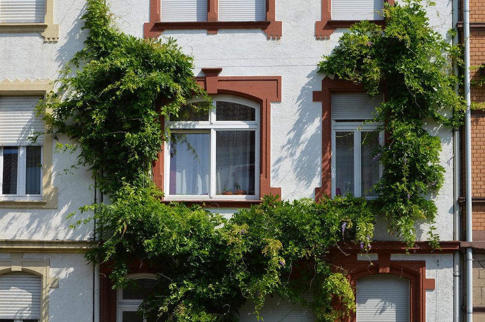 airbnb apartment building.jpg
