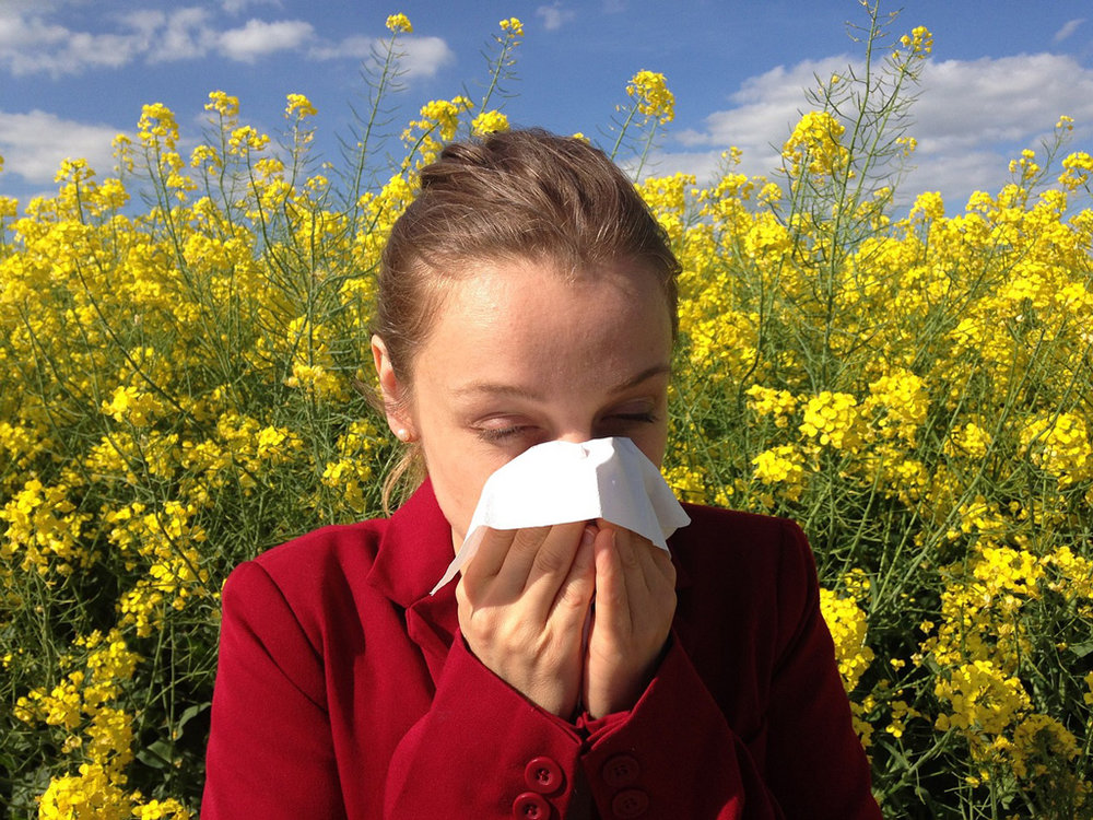 tips for airbnb hosts allergies