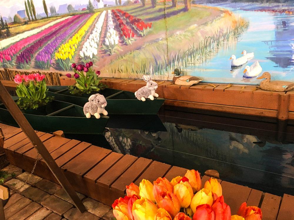 Skagit Valley Tulip Festival Tulip Town indoor flower show