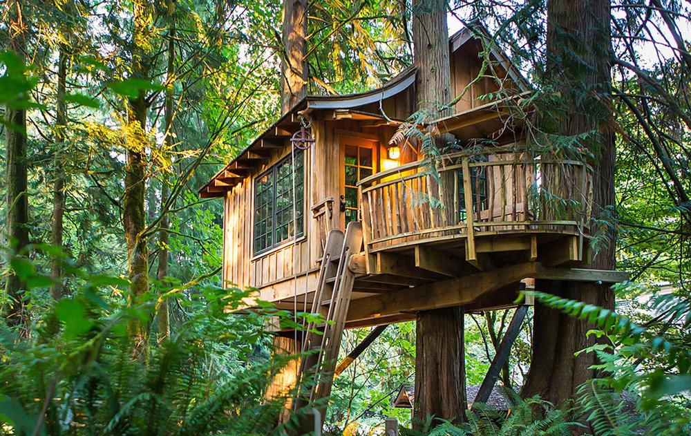 Image Courtesy Of www.TreehousePoint.com