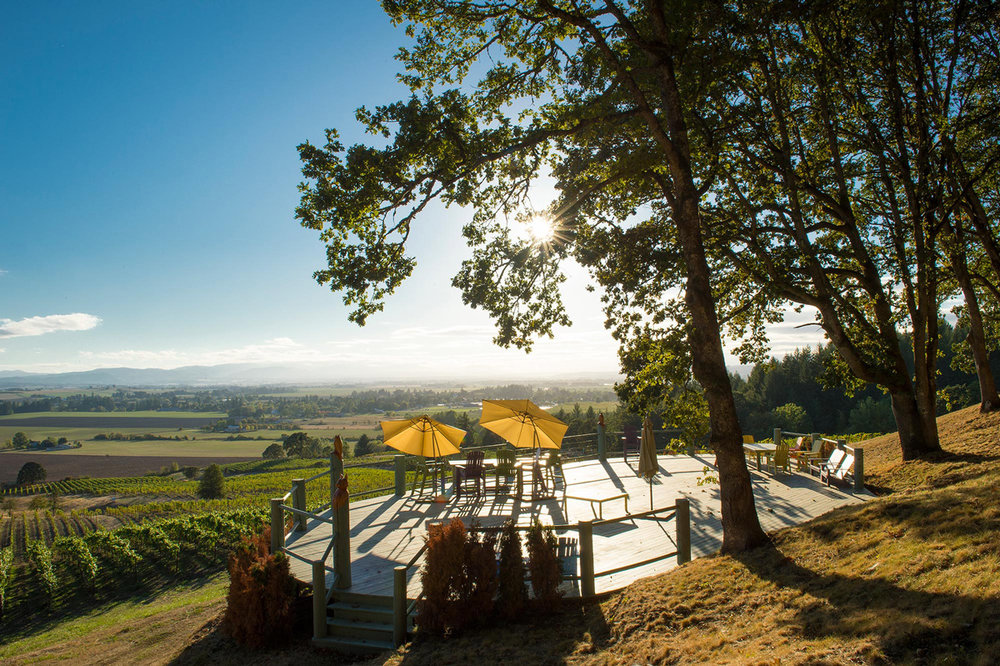 Photo Courtesy of Keeler Estate Vineyard