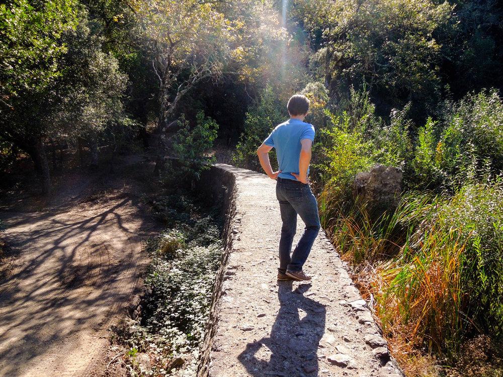 Spending Time In The Heart of the Sonoma Valley   Jack London State Park   Glen Ellen California