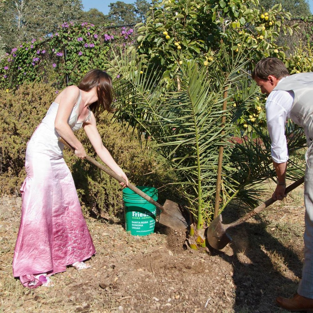 Planting our wedding tree in 2014 - Photo by  Cathy Stancil