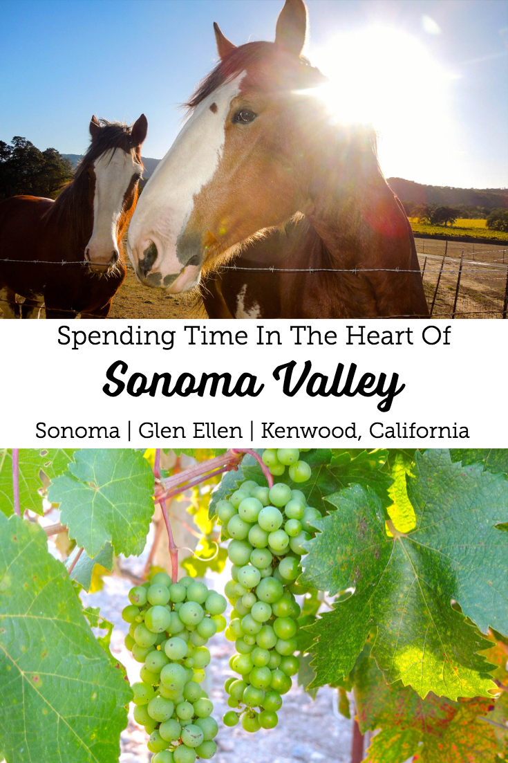 Spending Time In The Heart of Sonoma Valley   Sonoma, Glen Ellen, Kenwood California  #californiawine #bayareadaytrip #winetasting