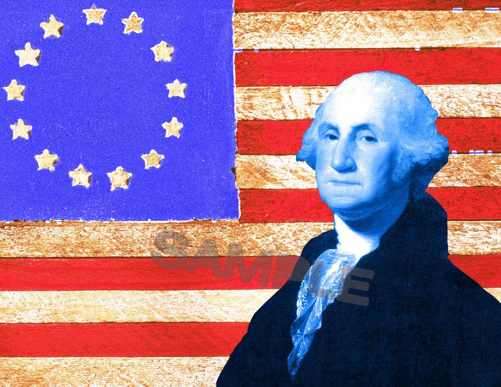 George Washington: Reluctant President -