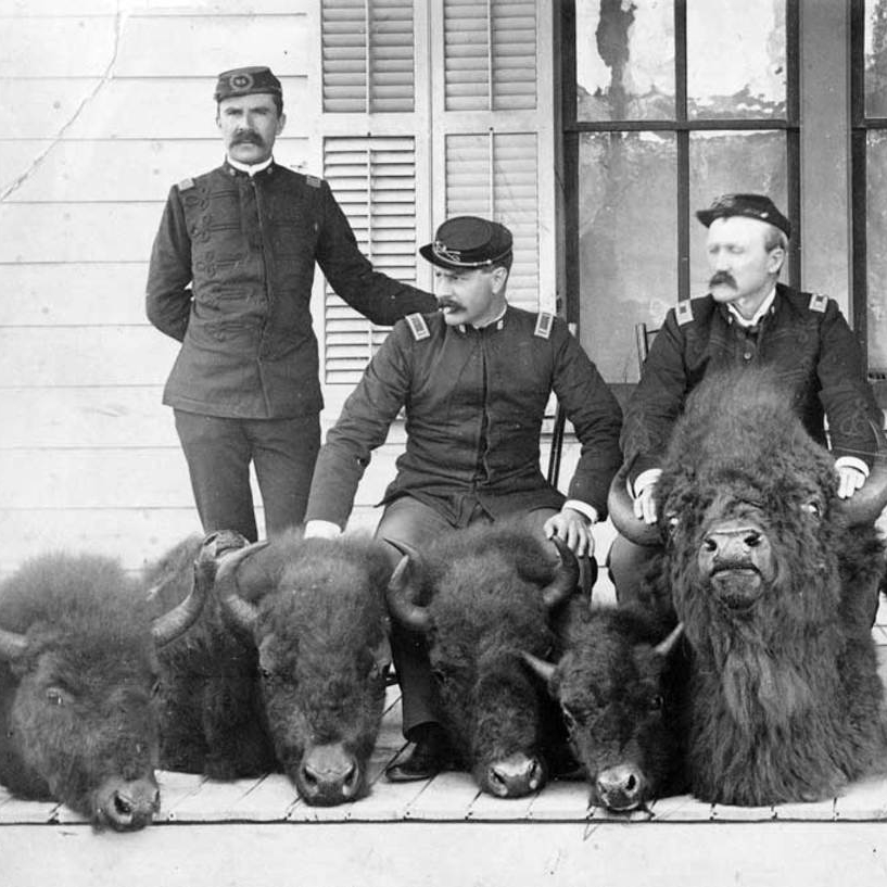 THE PHOTO THAT SAVED THE BUFFALO   A 1894 photo of Yellowstone soldiers posing with bison killed by a poacher leads to national public outcry and spurring Congress to act.    EPISODES / National Parks