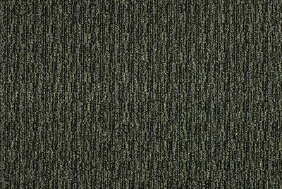 Orbit_86246.jpg