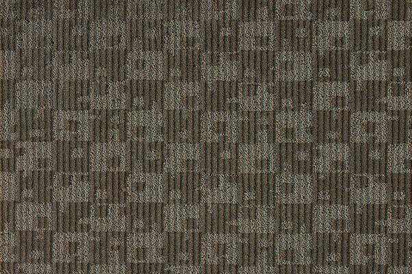 Vivace_84243.jpg