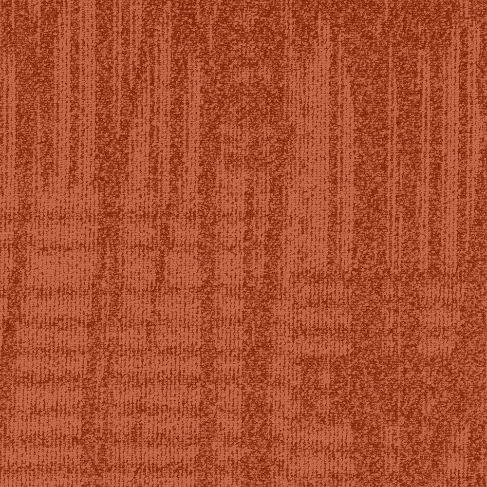 TMAQ_N450.jpg