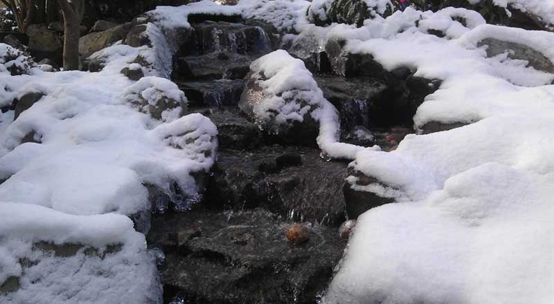 Pond Maintenance Services - Spring   Fall   Winter