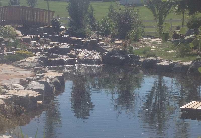 Backyard_Pond.jpg