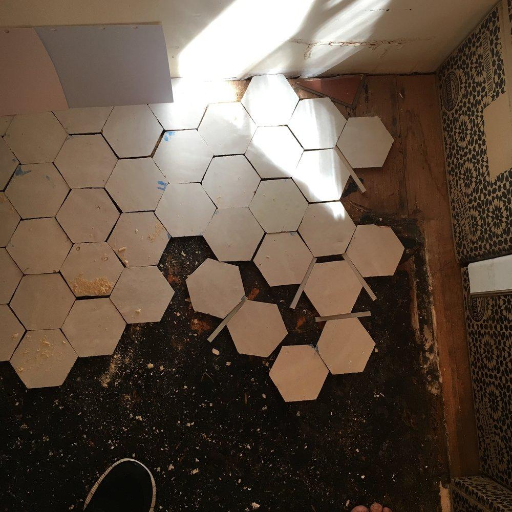 hextile_renovation_carterdesign_powderroom_grout