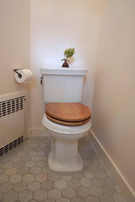 carterdesign_toilet_powderroom_kohler