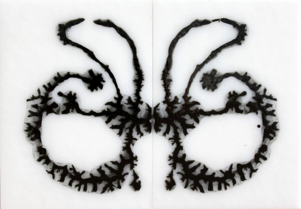 RorschachDetail1.2.500.jpg