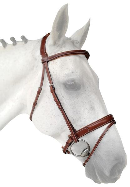 SC_crank_flash_noseband_w._headpiece_grande.jpg