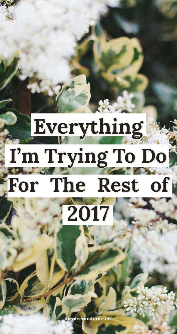 rest of 2017.jpg