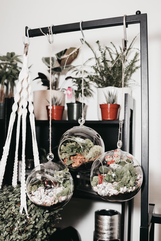 Cynthia Glass Earth Inc Edmonton | Photos by Nicole Constante | Brand Photography-6.jpg