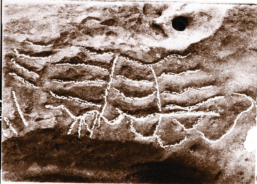 Native carvings in the Umpqua River near Scottsburg.