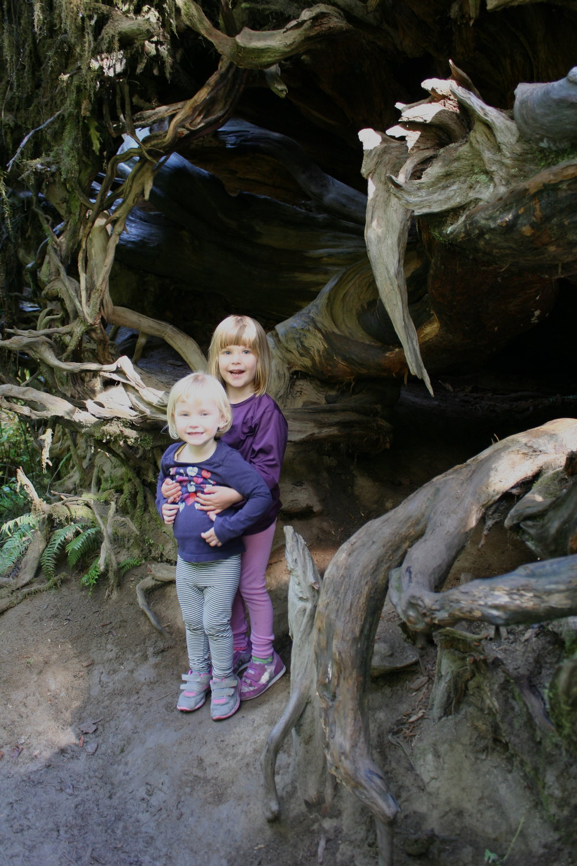 Girls at cedar tree.JPG