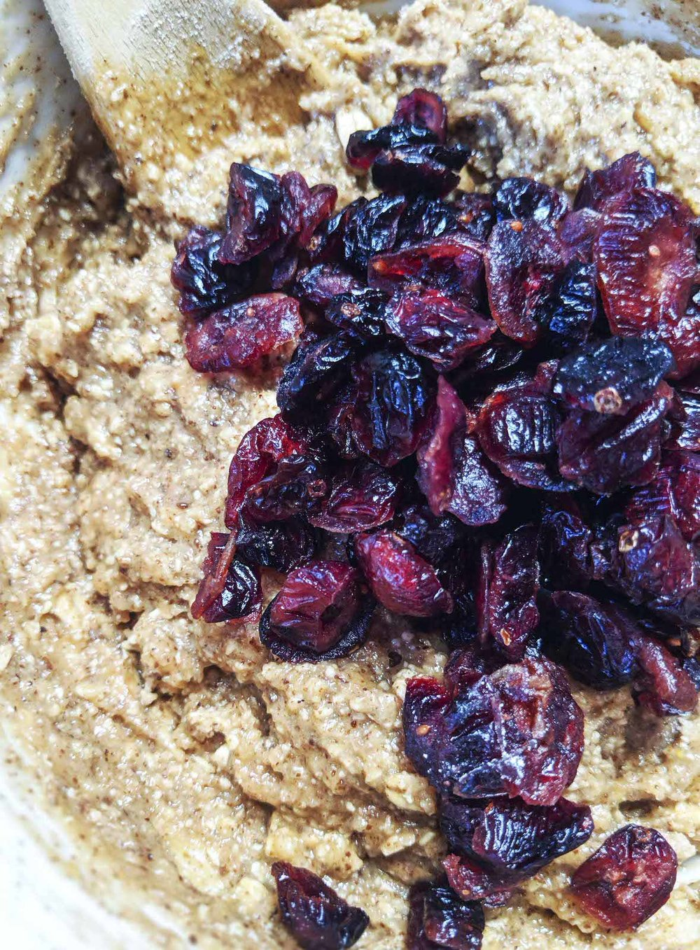 cranberry-oatmeal-cookie-dough-vegan-gluten-free.JPG