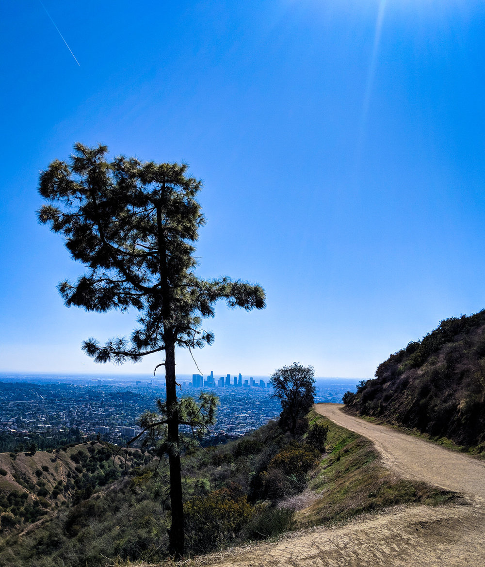 los_angeles_griffith_park.jpg