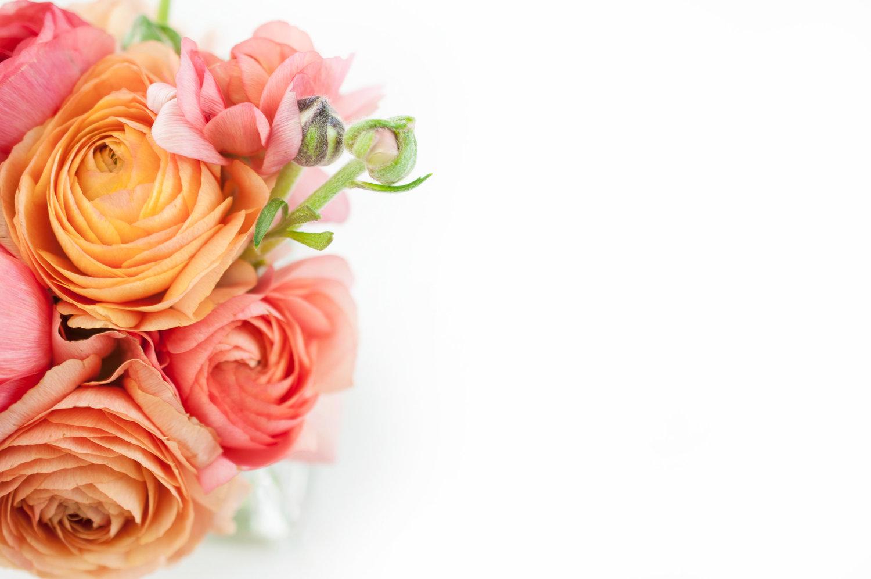 Paper flowers little flower paper company homeinvitationsrentalspaper flowersblog mightylinksfo