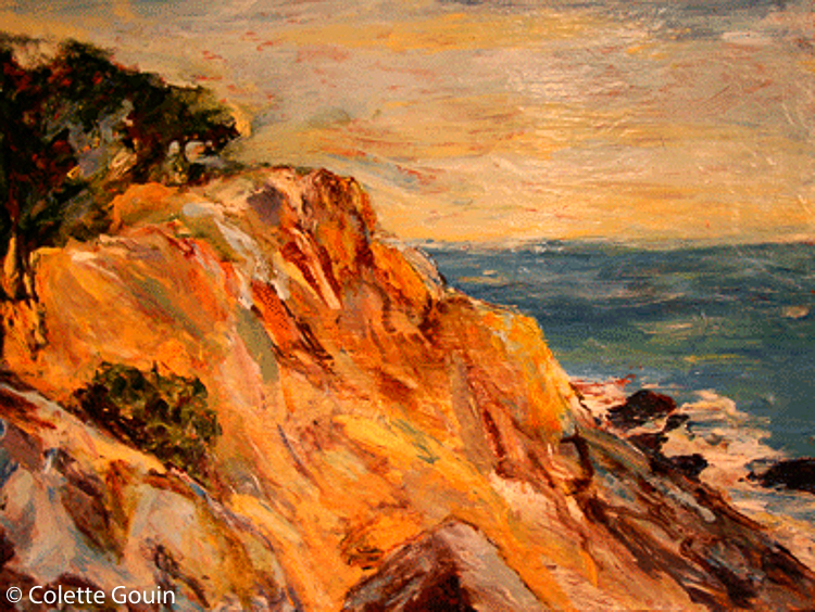 Shore Pine