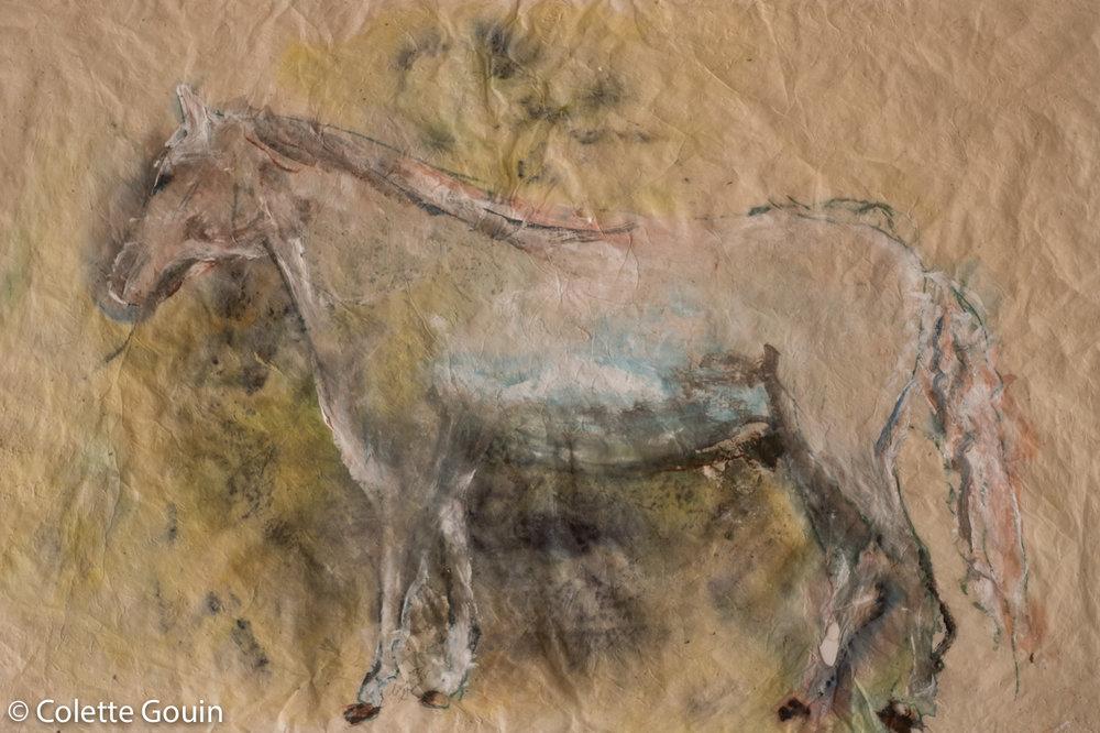 Tibetan Horse