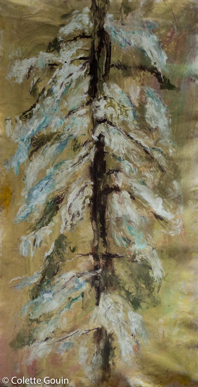 December Pine