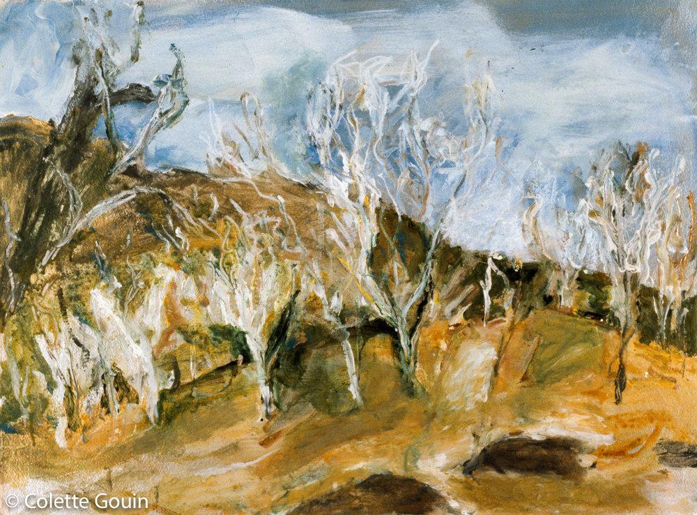 Kakadu Formation