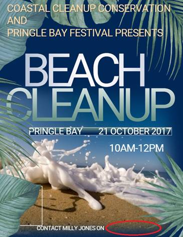 Pringle Bay Beach Cleanup Initiave Poster