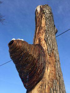 Vivian Visser's  Hive  at Portage Park