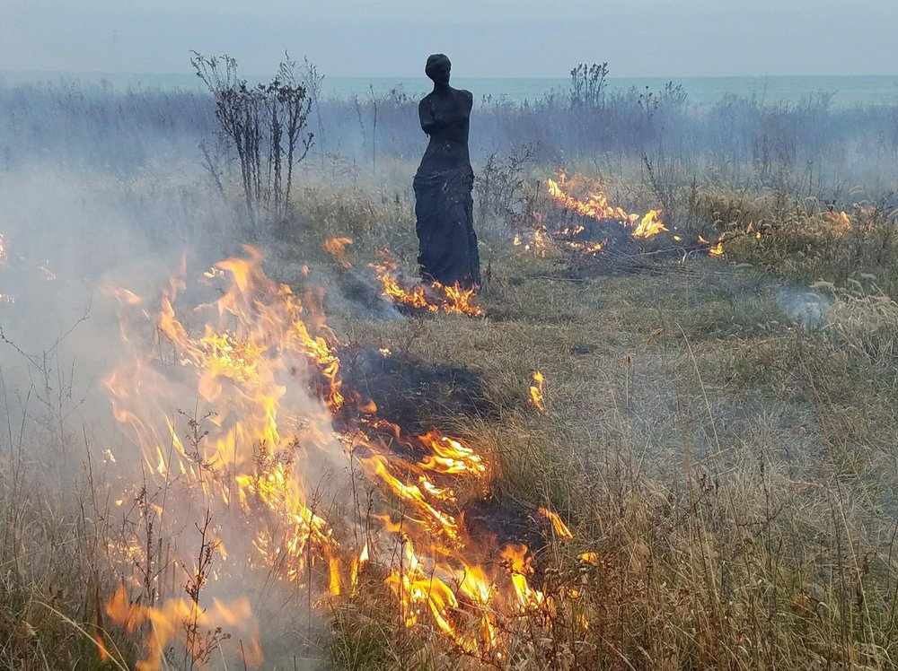 Sculpture-->Garden  during a controlled burn of the Burnham Wildlife Corridor. Photograph by Eric Anderson.