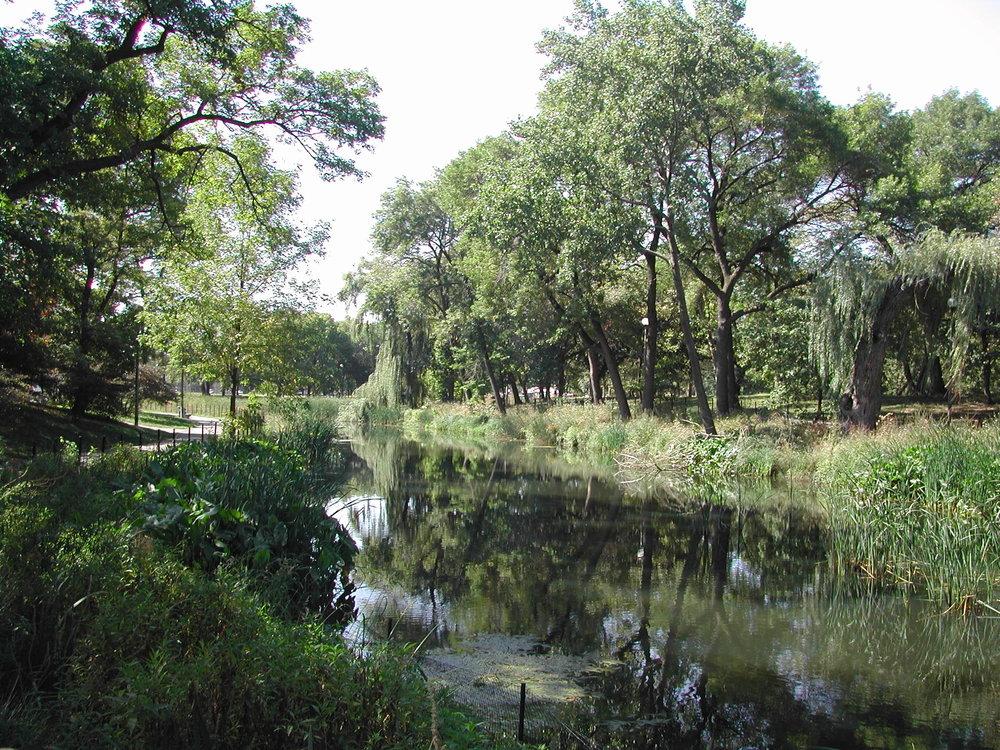 Jens Jensen's meandering Prairie River in Humboldt Park