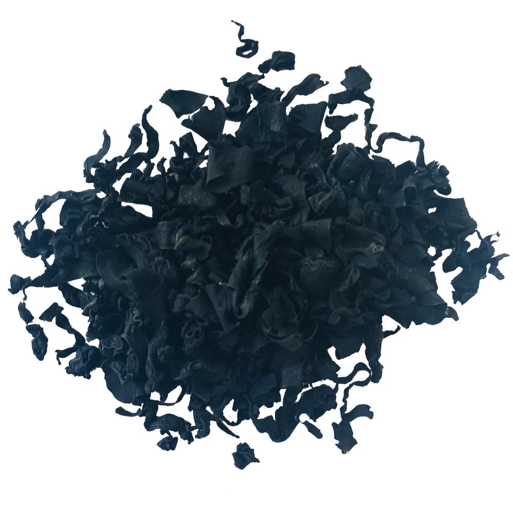 alge_web.png