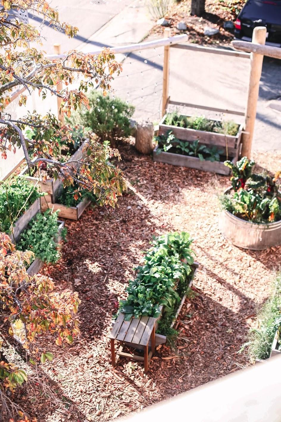 gardeningfall.jpg