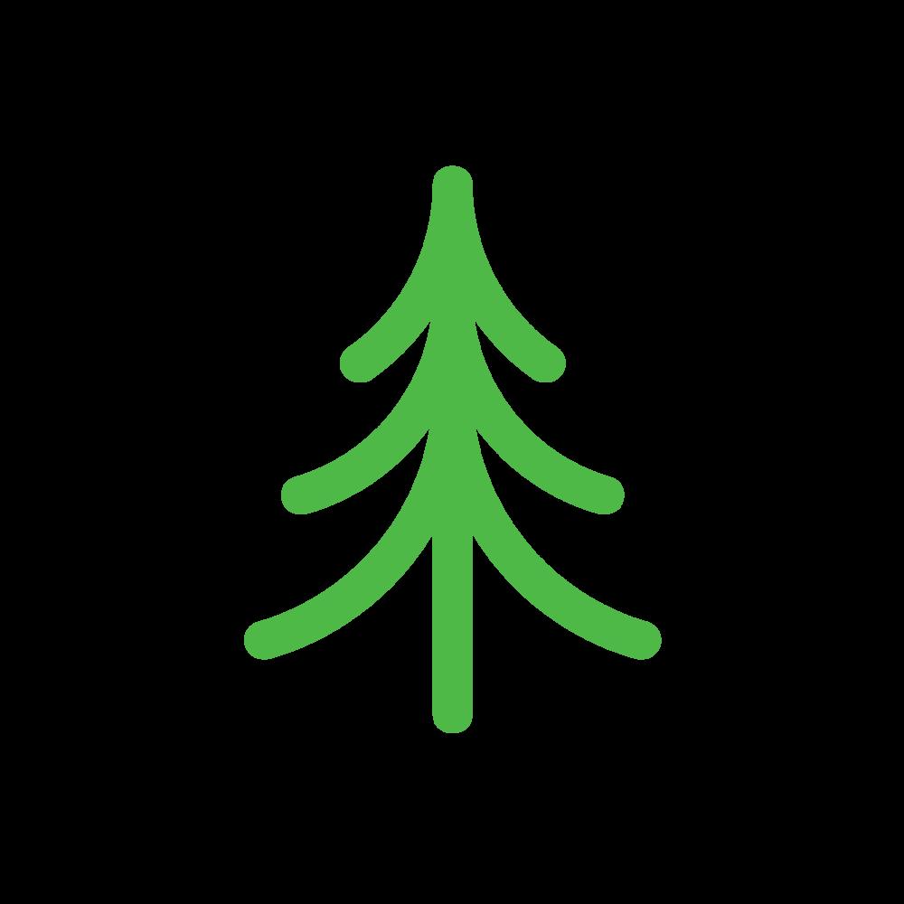 [pine] -