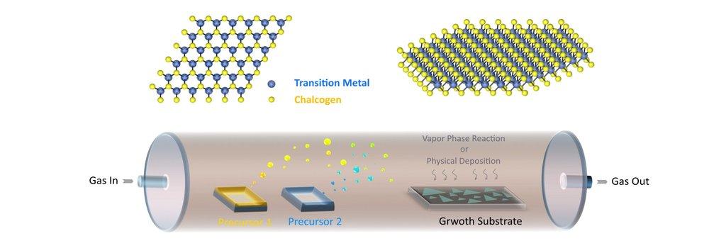 CVD growth process of 2D materials  (2D material research lab - 2dmaterials.kaust.edu.sa)