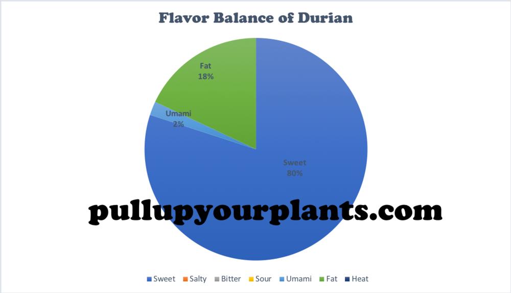 Graph 3: An Empirical Visualization of the Flavor Balance of  Durio zibethinus