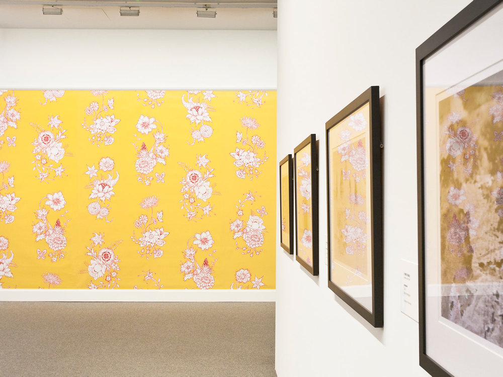 A section of Floral Explosion installed at the Baltimore Museum of Art
