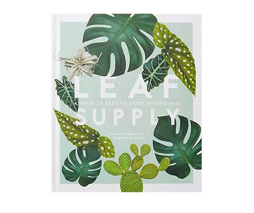 Leaf Supply by  Smith Street Books
