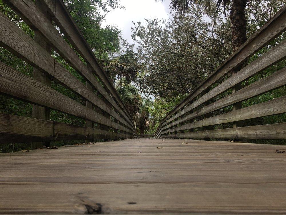 7_boardwalk.JPG