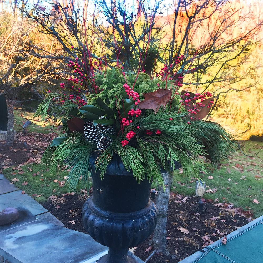 Potted Plants in Landscape Design For Winter