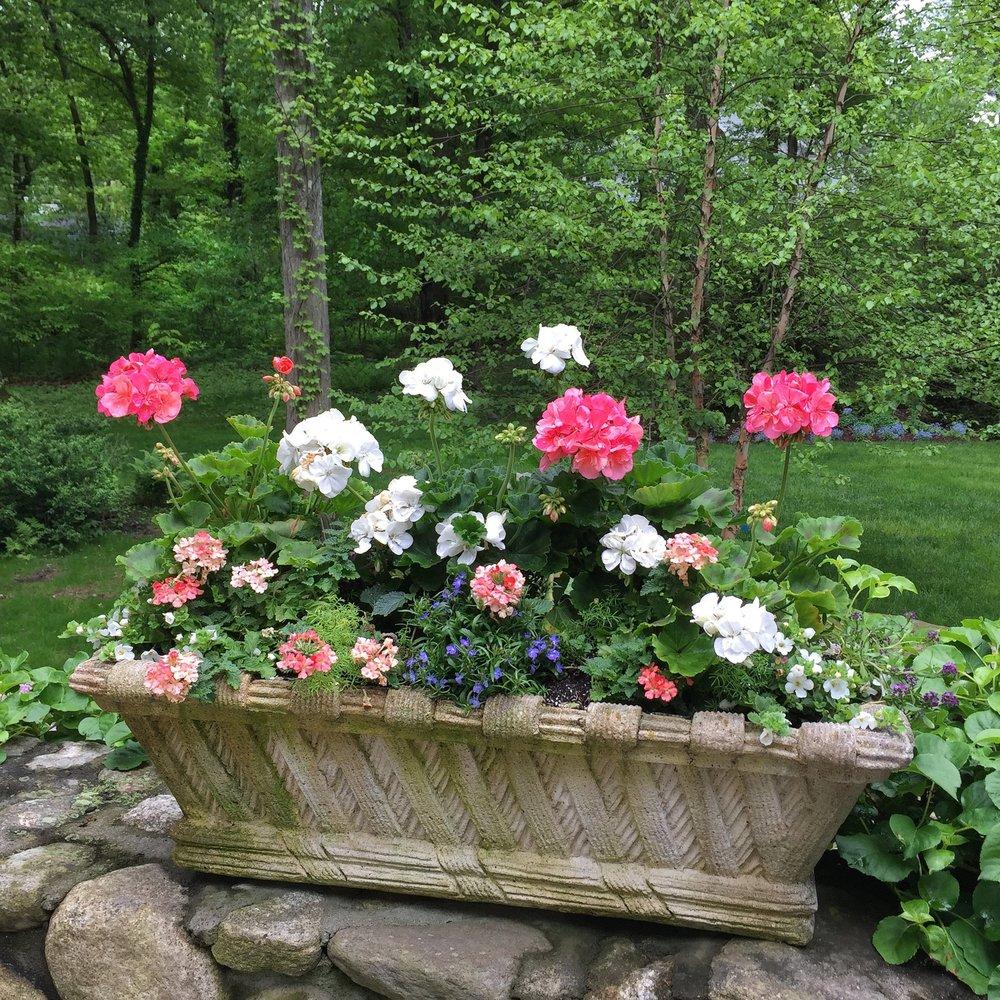 Container Flower Garden in backyard