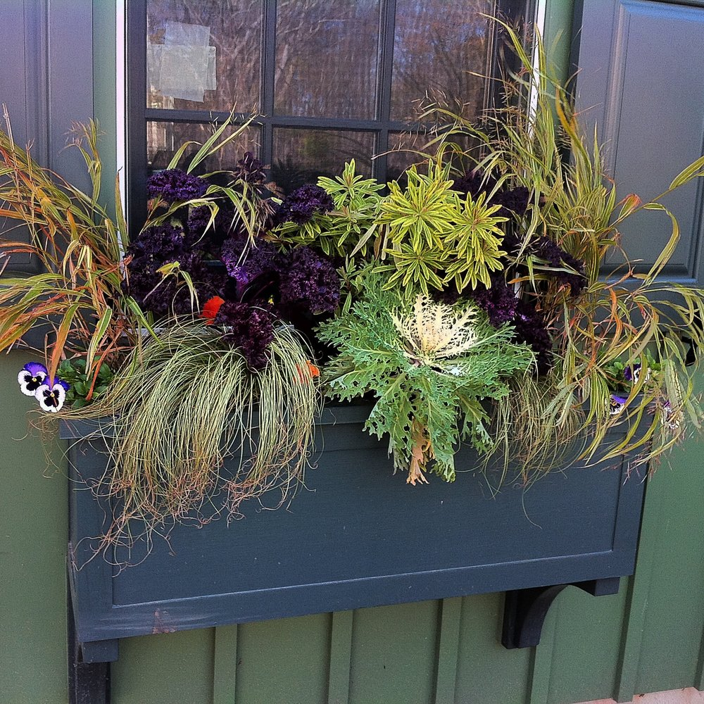 Boxed Container for Fall Garden on Window