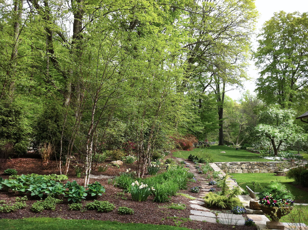 : Landscape and Garden Design in Front Yard